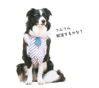 ミルキー愛犬の友-2.jpg