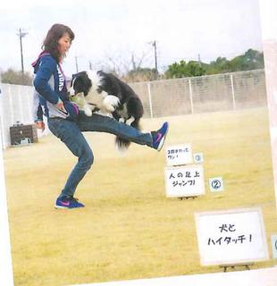 ミルキー愛犬の友-4.jpg