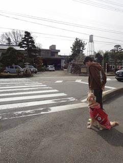 先生と散歩2.jpg