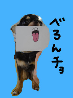 勘九郎5.jpg