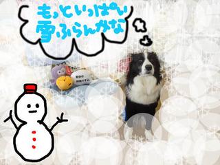 雪みるきー.jpg
